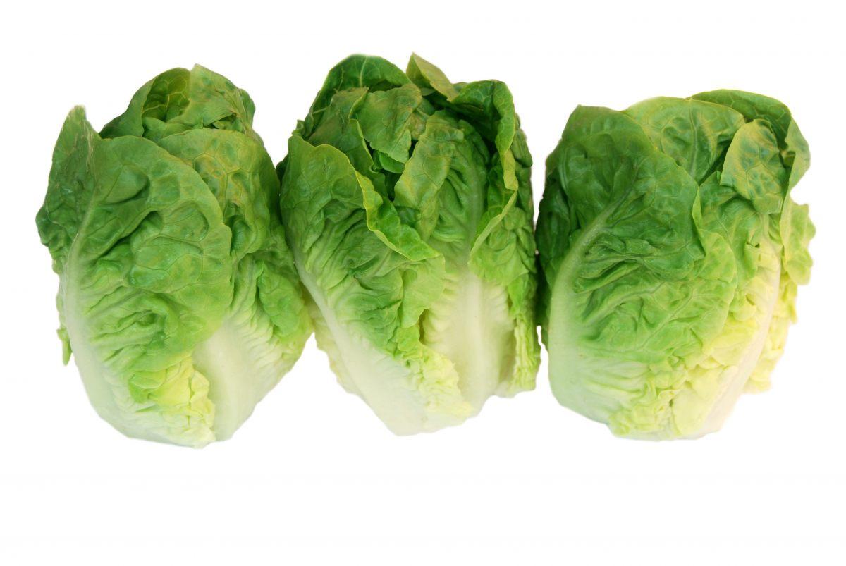salade verte calories. cool quelle est la recette de la salade csar