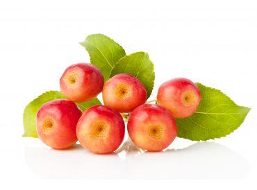 Pommes sauvages fruits - Comment conserver des pommes coupees ...