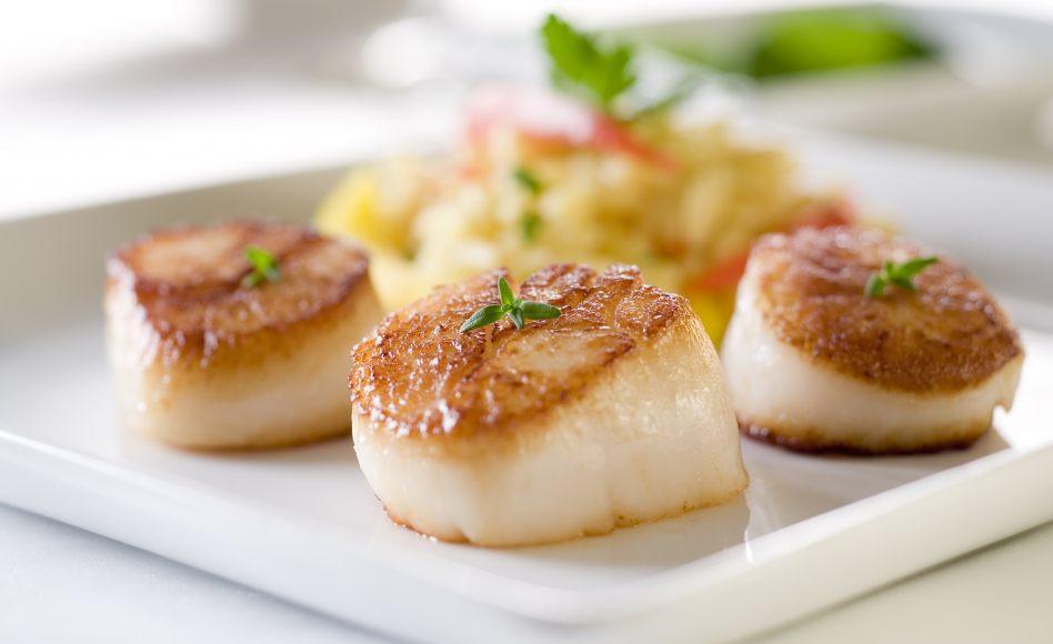 Recette de saint jacques la truffe noire et aux poireaux for Idee de diner original