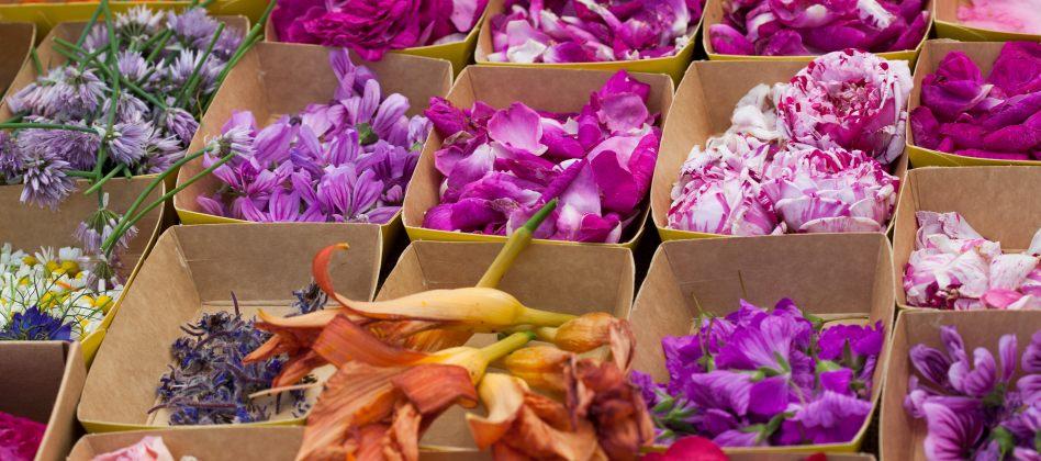 Des fleurs dans nos assiettes ! 1715b490a88