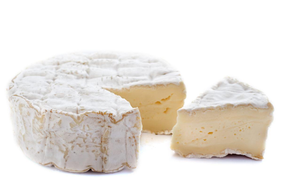 fromage 224 p 226 te molle œufs fromages et produits laitiers